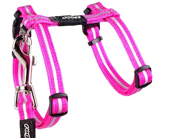 ROGZ Cat Harness and Leash ALLEYCAT