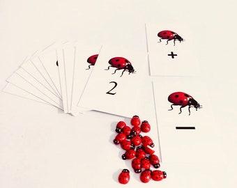 Ladybug Count Cards