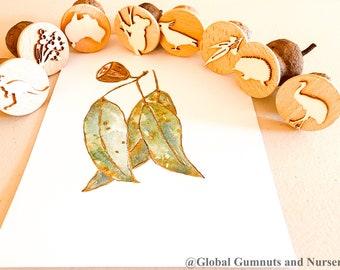 Gumnut Stamps | Australian Set | 4 or 8 pieces