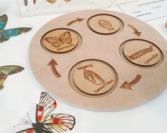 Butterfly Life Cycle PUZZLE | Montessori