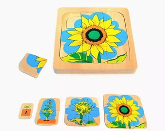 Sunflower Life Cycle PUZZLE | Montessori