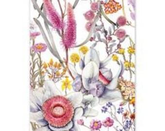 Art Card~ Wildflowers of the Northern Wheatbelt of Western Australia
