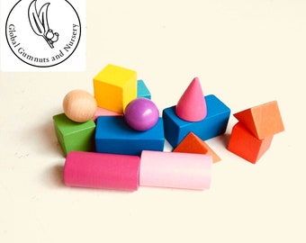 Geometric Wooden Solids 3-D Shapes - 14 coloured pieces