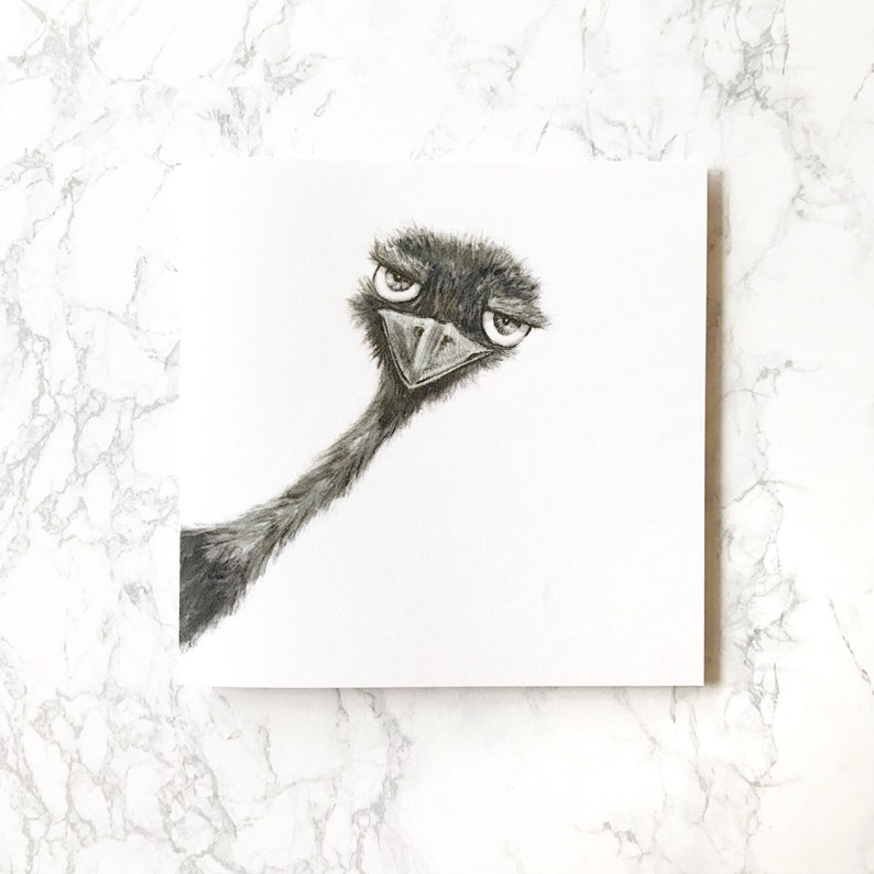 Animal Drawing Greeting Card Funny Birthday Art Print