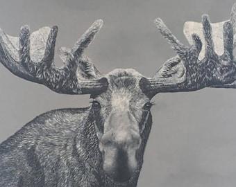 Big Hank a Negative Space Realism Moose Print