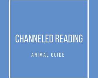 Spirit Animal Reading