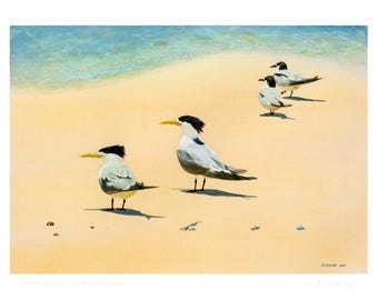 A5 card - At the Shore Line, Fraser Island