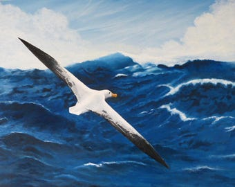 Oil painting - 'After the Storm' - Wandering Albatross (Diomeda exulans)