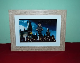 Harry Potter Custom mini figure in a frame. Great Wall Decor