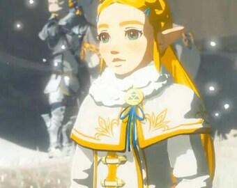 The legend of zelda breath of the wild cosplay Zelda winter outfit costume