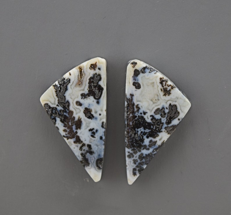 Black Feather Plume Agate Cabochon Pair