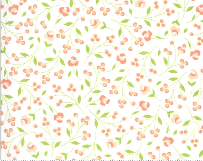 Apricot and Ash Fabric, White Floral Fabric, Apricot and Ash by Corey Yoder, Moda Fabrics, Floral Fabric
