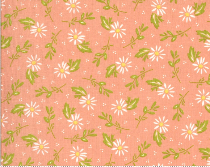 Happy Days Dainty Peach by Sherri and Chelsi