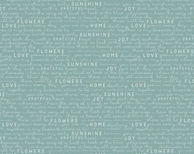 Gingham Garden Text Teal, My Minds Eye, Riley Blake Designs, Text Fabric, Yardage