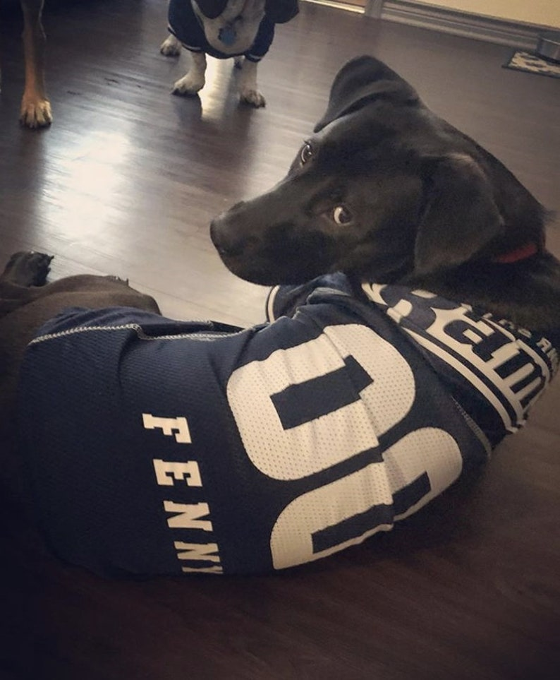 Los Angeles Rams Dog Jersey Personalized XS-XXL NFL Pet  266a45526
