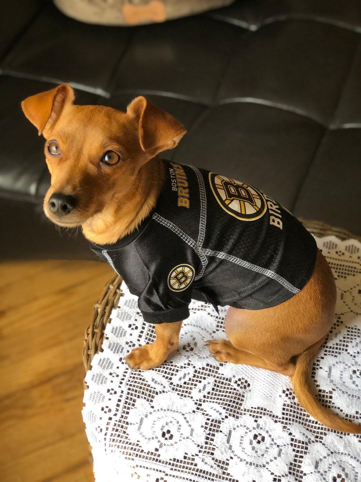 best service b4d08 41fb4 Pet Clothing Fan Shop Nashville Predators Pet Dog Hockey ...