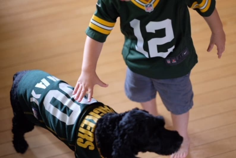 fdf5ed360b2 Green Bay Packers Dog Jersey Personalized XS-XXL NFL Pet   Etsy