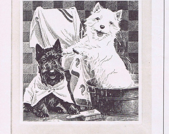 1941 Black & White Scotch Original Vintage Advertisement with Black Scottie and White Westie Dogs Taking a Bath