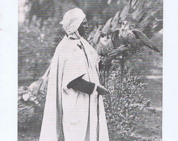 An Algerian Falconer in Biskra North Africa 1920 Magazine Photograph with Falcon