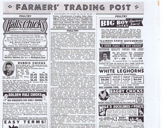 1940 Farmer's Trading Post Chicken and Interesting Old Farm Ads Original Vintage