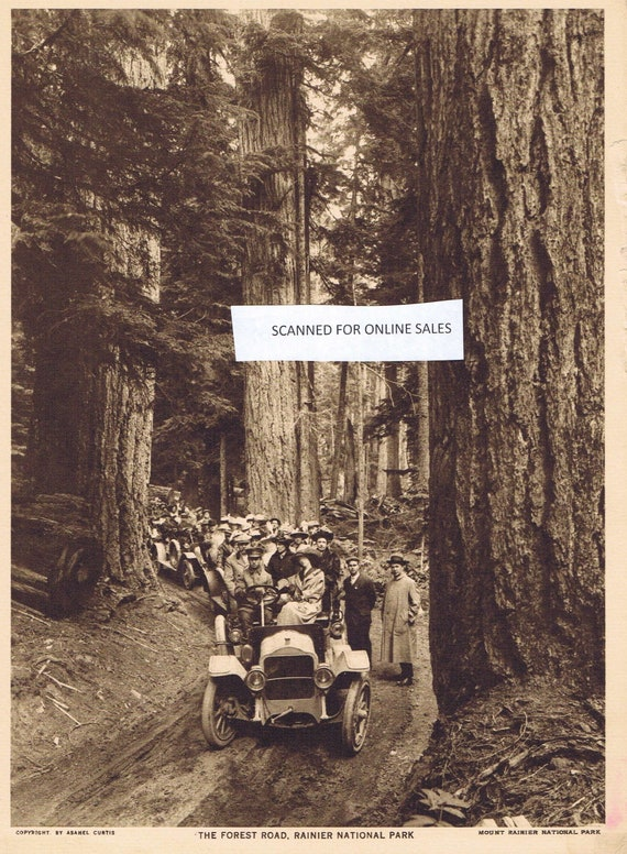 Old Paradise Valley Road at Mt Rainier National Park Sepia Tone 1918 Magazine Photo with Bonus Information Great Old-Time Photo