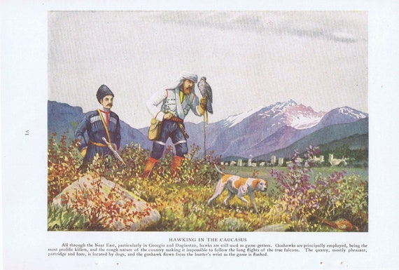 1920 Hawking in the Caucasus Hunting Vintage Magazine Drawing