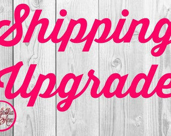 Shipping Upgrade to Priority EXPRESS (Overnight) Shipping for an already completed purchase