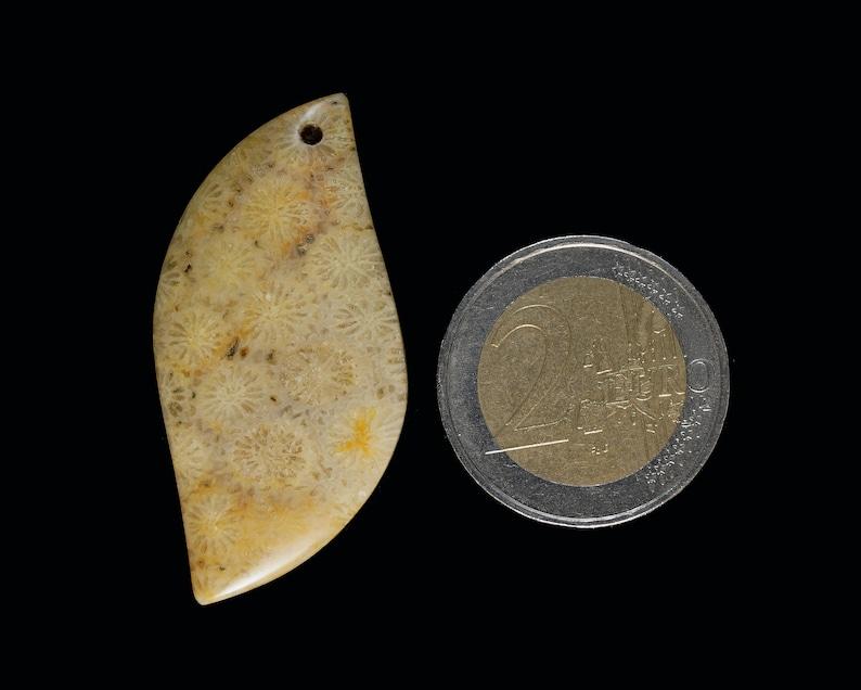 A natural Coral Fossil Pendant stone EA1089