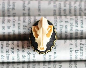 Wolf Skull cameo ring