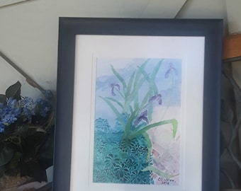 Iris at Gaiety Hollow watercolor 13X9 by CC Willow