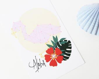 Map postcard Flamingo Aloha constellation