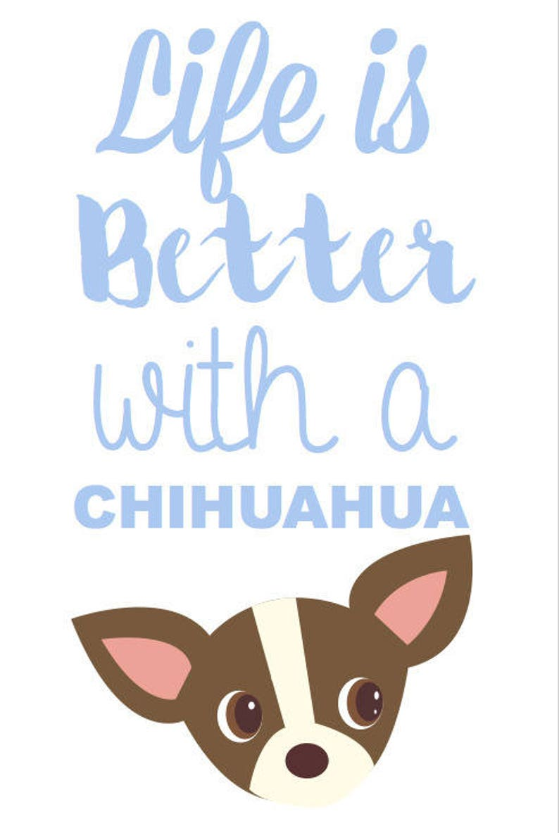 Postcard life is better with a chihuahua cards