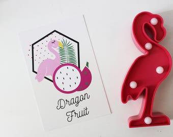 Map postcard Flamingo Dragon Fruit