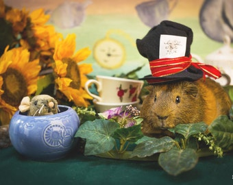 Mad Hatter's Tea Party Guinea Pig Greeting Card
