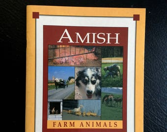 Amish Farm Animals A day on an Amish Farm Horses, cows, pigs, goats, sheep, geese, ducks, chickens, turkeys, guinea hens and more