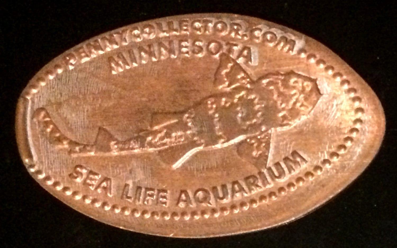 american rare coin bloomington minnesota