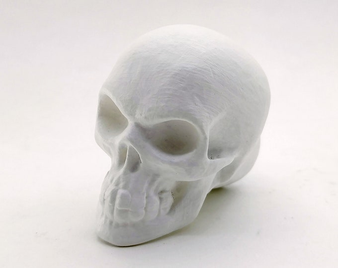 Human Skull Drawer Knob | Gothic Decor