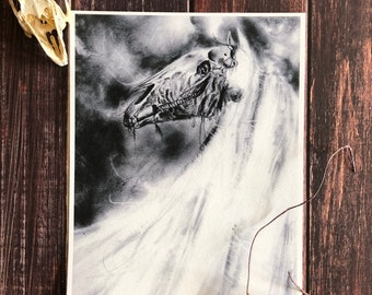 Mari Lwyd- 9x12 Fine Art Print, Gothic Wall Decor, Christmas, German Folklore, Baphomet, Goat Skull, Ritual, Dark Surrealism