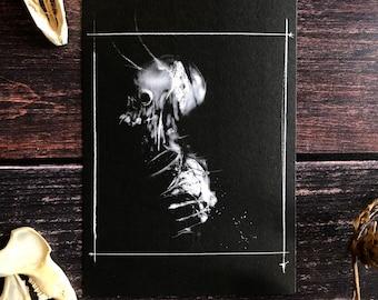 torn from the lead coffin-5x7 dark art print, Satanic Decor, Witchcraft, goat skull, Occult Art, Black Magic