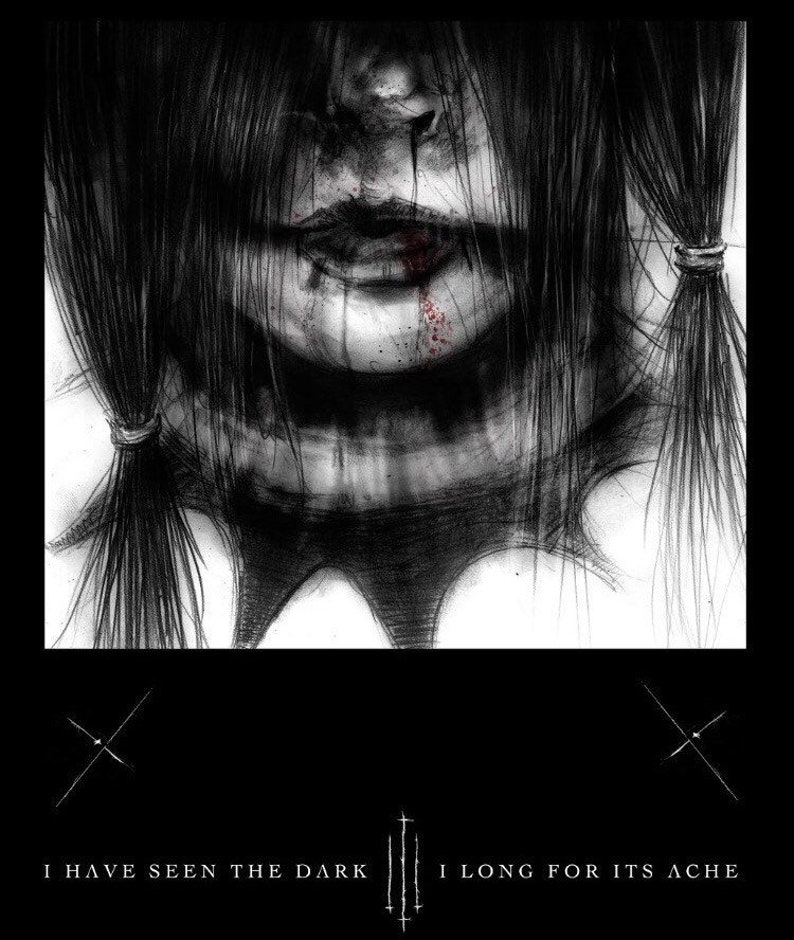 I have seen the dark and I long for its ache Dark Art Book image 0