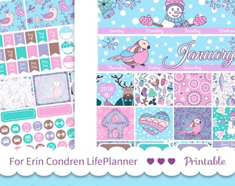 JANUARY MONTHLY KIT 2019 use for Erin Condren Lifeplanner ™ printable planner stickers Cut file Winter monthly spread