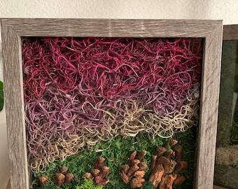 Framed Moss Wall Art - Colorado, Boulder, Flatirons Inspired