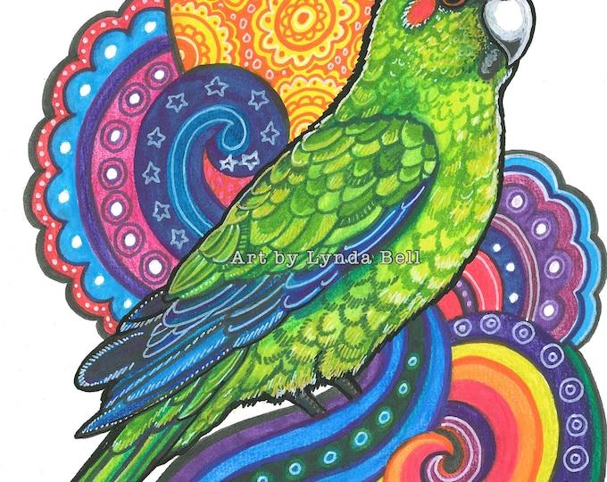 Prismatic Parakeet - original illustration