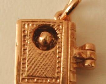 Genuine SOLID 9K 9ct ROSE GOLD 3D Bookworm charm/pendant
