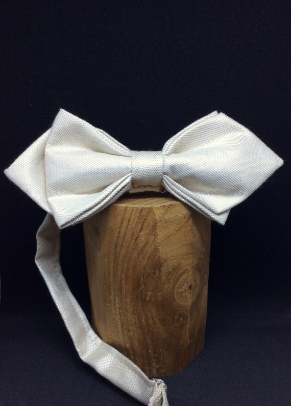 golden-white, pointed bow tie