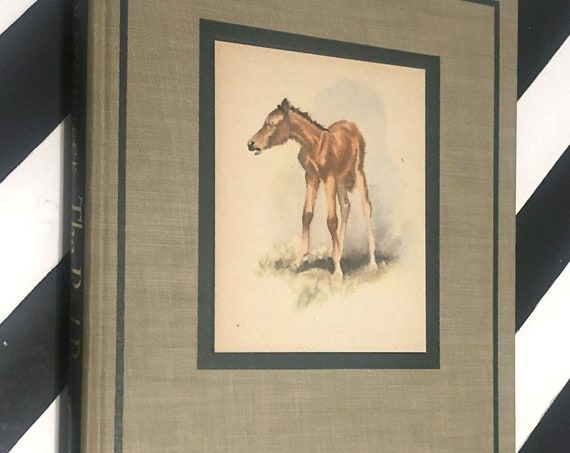 The Red Pony by John Steinbeck (1945) first illustrated edition book