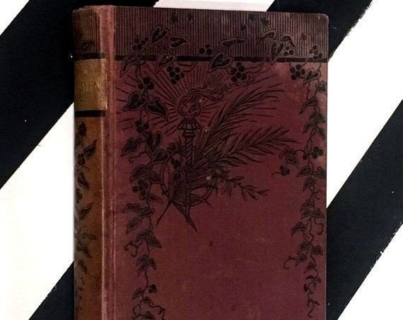 The New Magdalen by Wilkie Collins (no date) hardcover book