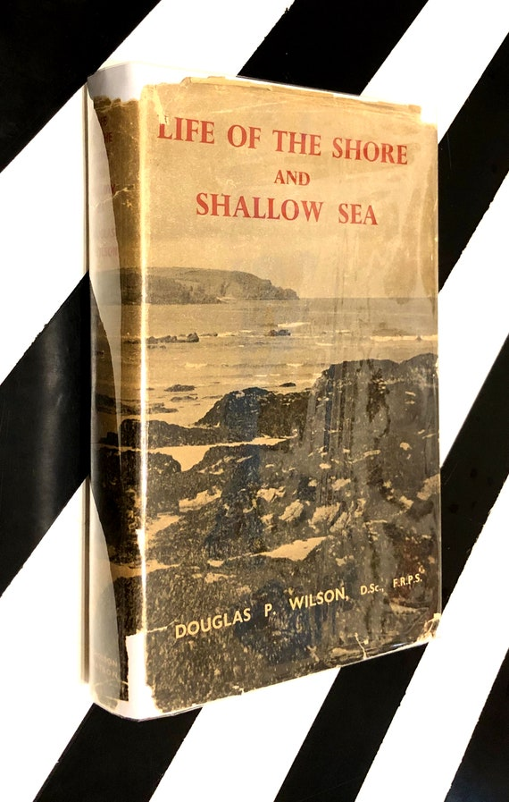 Life of the Shore and Shallow Sea by Douglas P. Wilson (1951) hardcover book