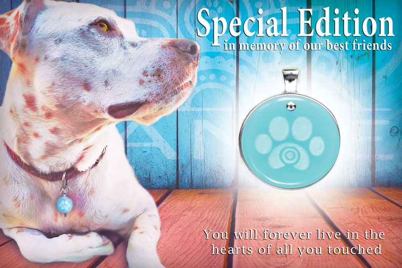Pet Pendant In Memory Loss of a Pet Welcome Home New Pet Pet Collar Color Therapy