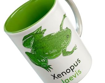 Xenopus Frog Model Organism mug